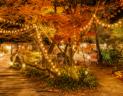 岐阜県奥多治見にひっそりと佇む複合施設、アルティストビラージュ
