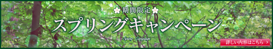 Spring キャンペーン